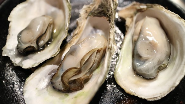 food oysters